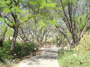 The main path at Miraval