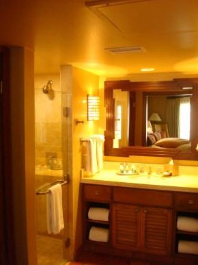 Bathroom w/walk in shower
