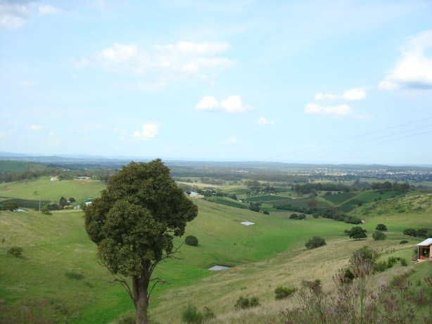 Hunter Valley wine Sydney Australia