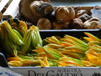 Florence market zucchini flower