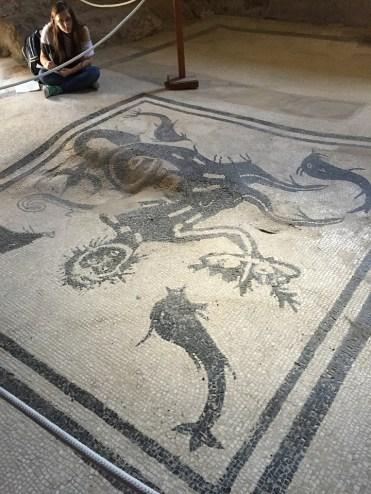 Herculaneum Bathhouse Mosaic Tile Floor