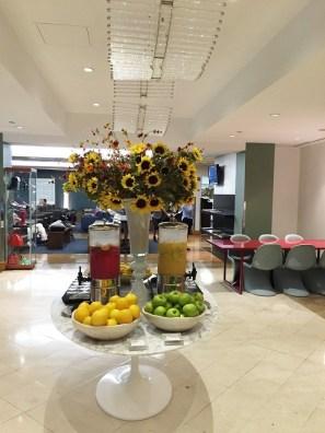 British Airways Lounge JFK Fruit Snacks
