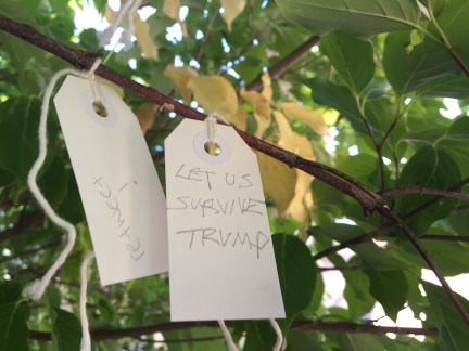 "Wish to ""survive trump"" on the Wish Tree for Washington, DC"