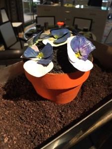 Las Vegas Desserts Chocolate Flower Pot Cake Le Jardin Birthday Cake