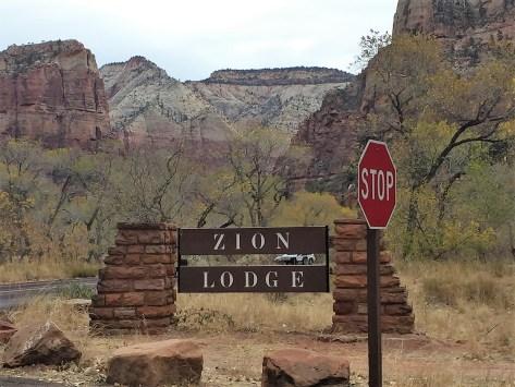 Zion Lodge View