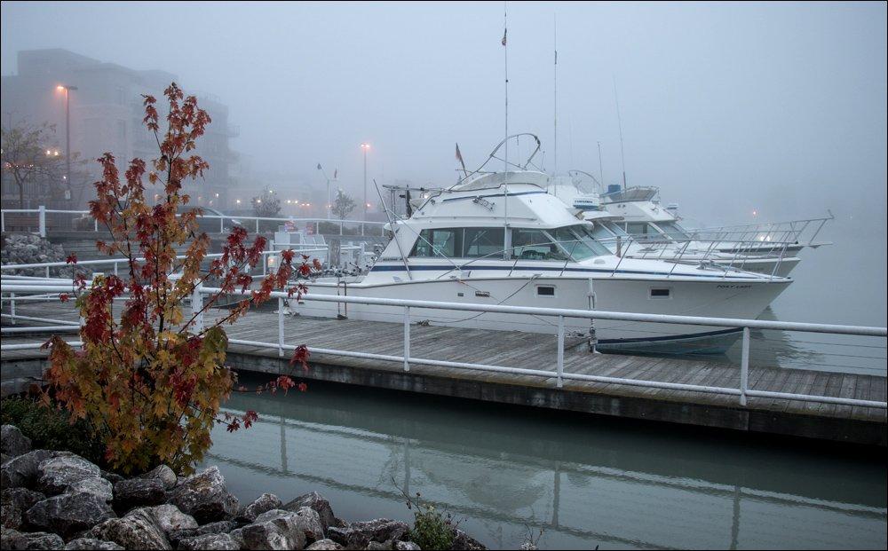 Salmon Charter Boats