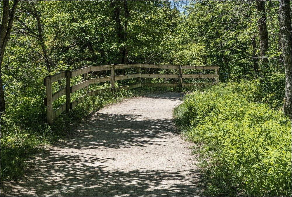 Quarry Lake Trail