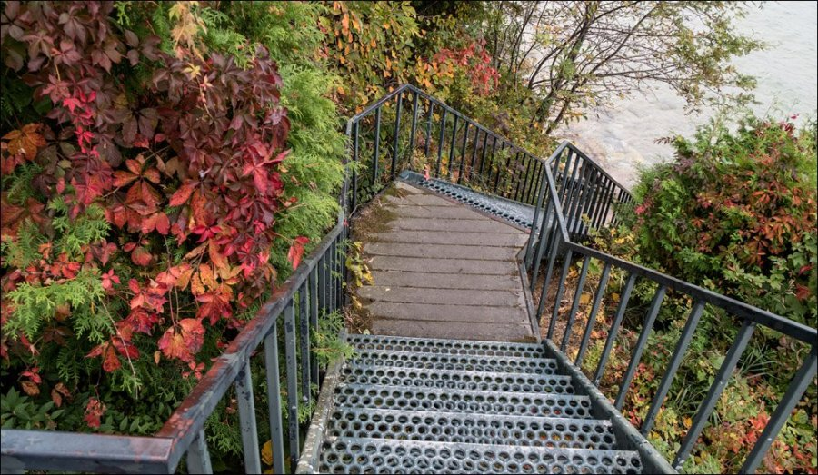 Stairway to the Shore