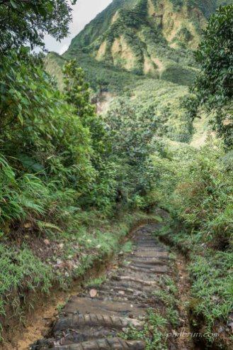 Chemin de descente depuis le col Morne Nicholls