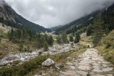 Montée dans la vallée de Lutour vers le lac d'Estom