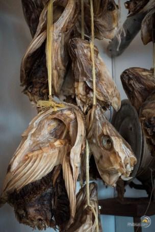 Poisson séché dans l'ÀLFACAFÉ à BorgarFjordur eystri