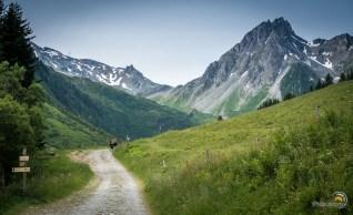 Le chemin monte vers le col du Bonhomme au fond
