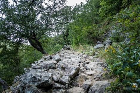 La montée sur les pans du Puy Ferrand est au début assez caillouteuse. De bonnes chaussures sont ici requises !