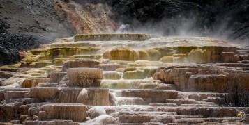 Mammoth hot springs terrasses