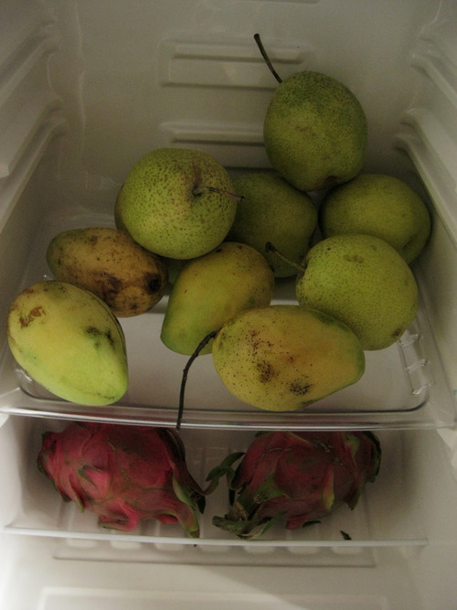 Fridge Full of Fruit