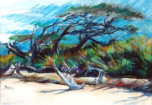 "Philip Bates Artist ""Beach at Blackbeard Island"" 9 1/2X 13 1/2 mixed media $150 framed"