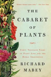 plant Caberet