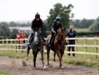 colin small gallop