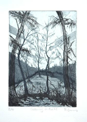 Philippa Jones, Growing on rocks, 3 plate copper etching 2012