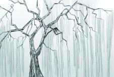 willow_pattern