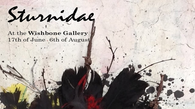 Sturnidae Exhibition