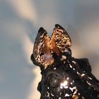 Sculpture de Philippe Buil en metal Dentelle de bronze et d'acier représentant une tête de cheval Piece unique Sculpture of Philippe Buil in metal Bronze and steel lace representing a horse head Unique Piece light
