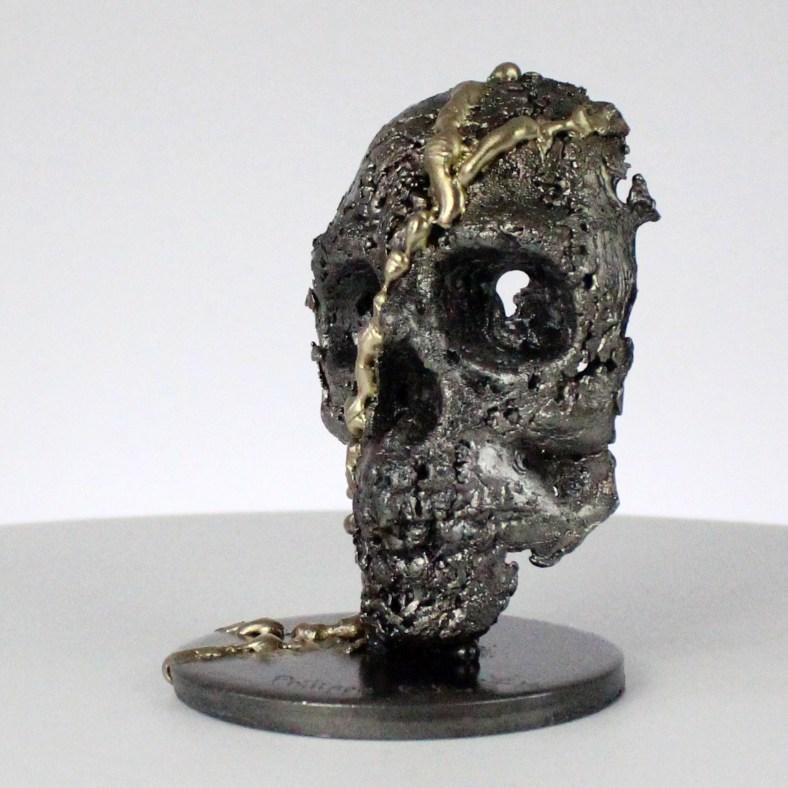 Crane Vanité - Sculpture tete de mort acier laiton - Vanite art - Skull artwork steel brass - Buil