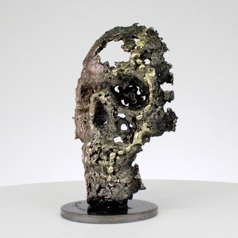 Crane - Sculpture tete de mort acier bronze laiton - skull artwork steel brass - Philippe Buil