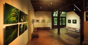 """L'exposition """"Le paradis vert"""" à la Maison de la réserve, Petite Camargue Alsacienne (1)"""