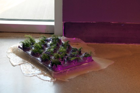 Medium: poured latex-enamel paint, cardboard apple trays, grass, dirt/soil, LED grow light, water