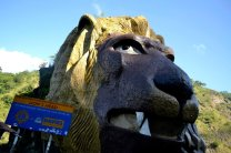 Baguio Lion - Kennon Road Baguio Lion