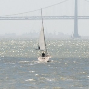 Random sailboat in the bay