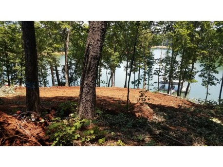 Lake Hartwell as seen from the lot.