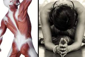 Fascial tissue and woman doing yoga