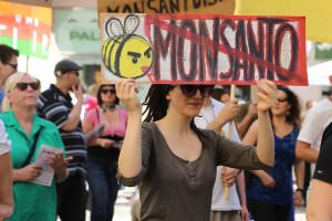 Monsanto protesters