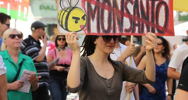 Monsanto protesters