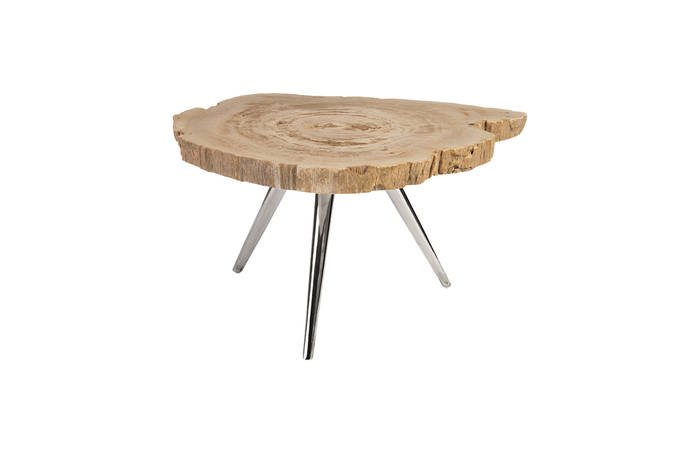 Petrified Wood Coffee Table / Stainless Steel Legs