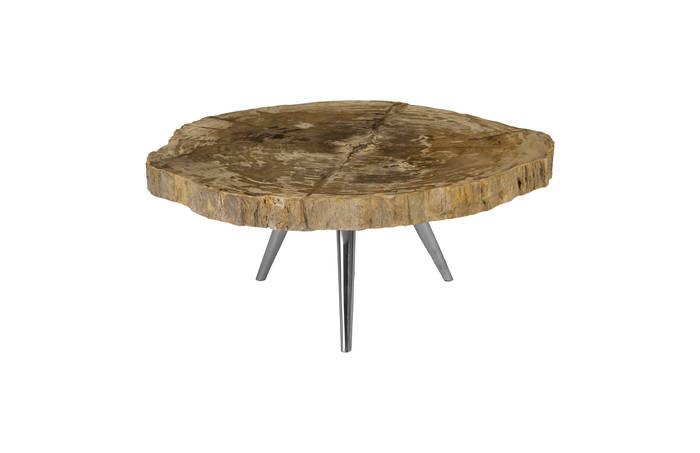 Petrified Wood Coffee Table