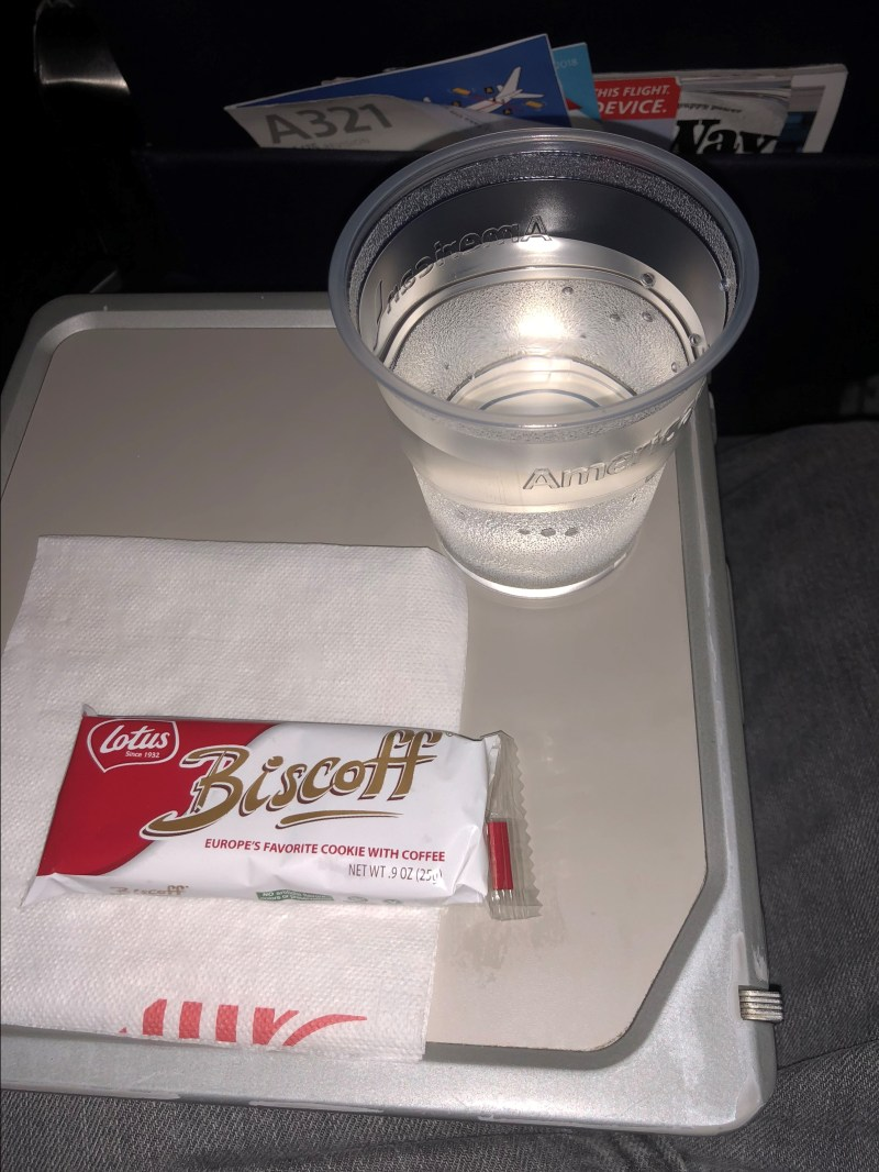 American Airlines A321 Economy
