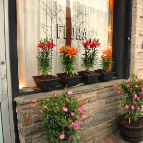 Spring Has Sprung at Flora Restaurant in Jenkintown