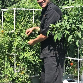 Autograph Brasserie Offers Garden To Table Summer Dishes, Recipe for Rosemary Focaccia