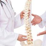 chiropractor-spine-back