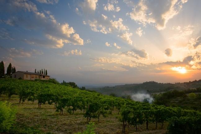 Tuscan Sunrise - K60