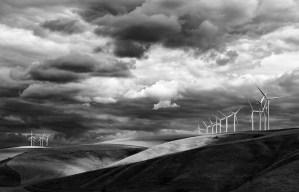 Wind on the Palouse