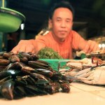 Paralytic Shellfish Poison