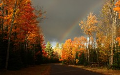 3d-abstract_widewallpaper_autumn-road_35574