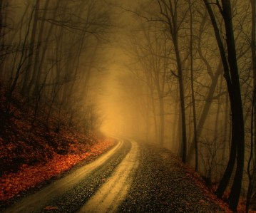 Autumn-Road_44
