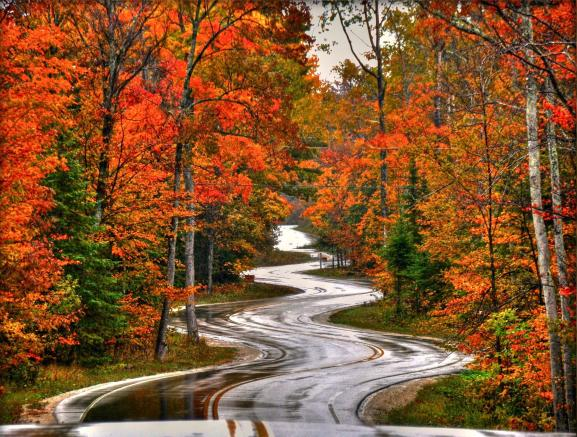 autumn_road-1560349