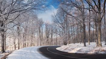 curvy-winter-road
