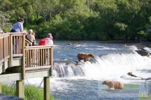 Tourists view Brown Bears at the Brooks Falls, Katmai National park, southwest, Alaska